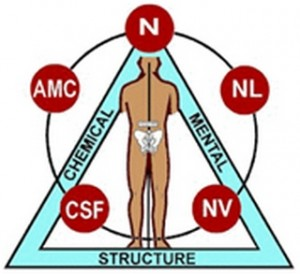 Applied Kinesiology AK