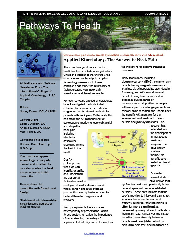 ICAK Newsletter Volume 3, Issue 3